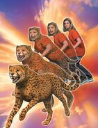 Rachel morphing Cheetah