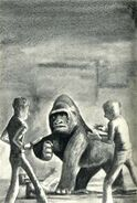 Marco as gorilla fights punks The Predator Japanese illustration