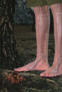 Animorphs 10 the android inside cover only high res