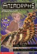 Animorphs 43 the test cover high res
