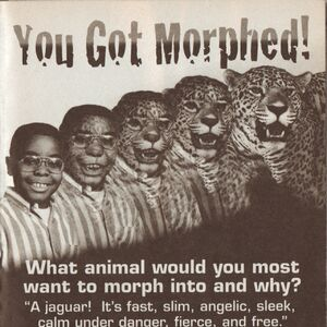 You got morphed book 12.jpg