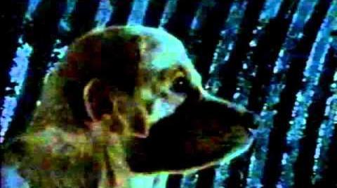 Animorphs Commercial
