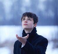 Gilbert im Schnee