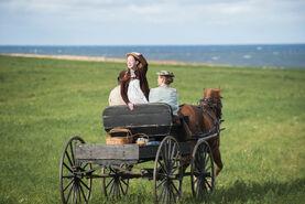 Anne Matthew Marilla auf Kutsche