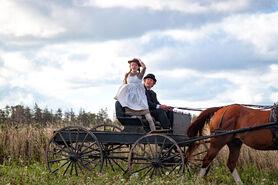 Anne und Matthew feld
