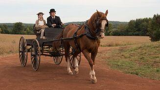Anne und Matthew in der Kutsche