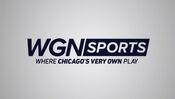 Wgn-sports-1024x578