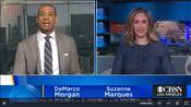 KCBS CBS2 News 11AM open - January 6, 2021