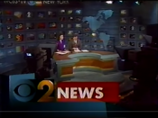 WCBS Channel 2 News Saturday 7PM open - January 29, 1994