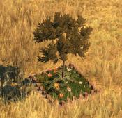 Flowerbed10Screenshot