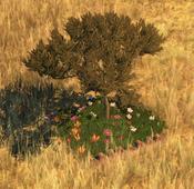 Flowerbed6Screenshot