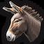 Donkey 0