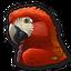 Parrot 0