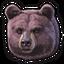 Black bear 0