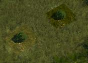 Bush2Screenshot