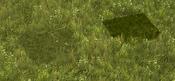 GrassScreenshot