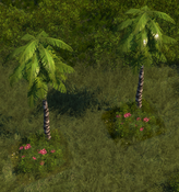 PalmTree6Screenshot