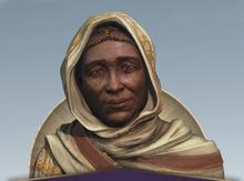 Elder Talking Head.png