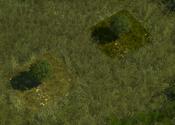 SmallTreeNWScreenshot
