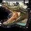 Crocodile 0