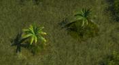 TropicalForest2Screenshot