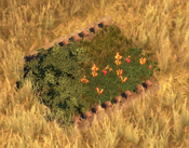 Flowerbed1Screenshot