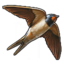 Swift 0