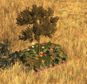 Flowerbed7Screenshot