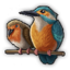 Smallbirds 0