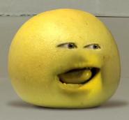 Grapefruit20