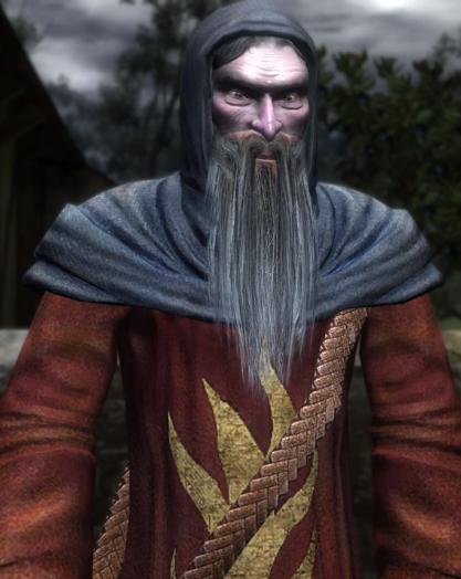 Geistlicher (Witcher)