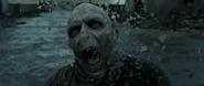 VoldemortTod
