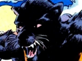 Weasel (DC Comics)