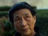 Madame Gao