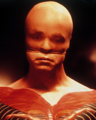 Film, 1986