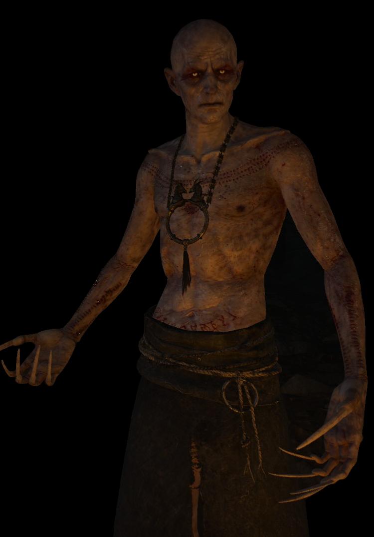 Unsichtbarer (Witcher)