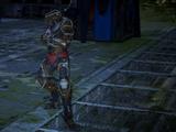 Outlaw Lancer
