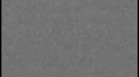 Взлом канала Бибигон (06.06