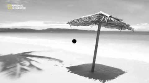 Иллюзия черная точка
