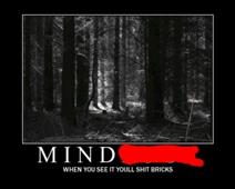 Mind****
