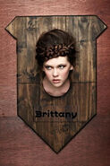 Antm cycle 19, capitulo 1, Brittany