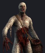 Vengeful mummy bestiary.jpg