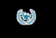 AIN Logo Transparent