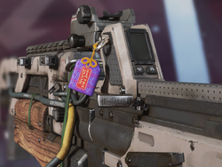 Charms Purple Package.png