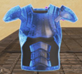 Rare BodyShield Item.png