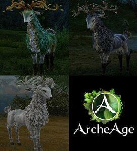 Deers.jpg