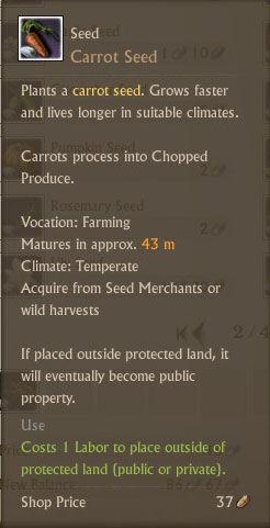 Carrot Seed Txt.jpg