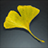 Icon item 0996.png