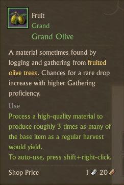 Grand Olive Txt.jpg