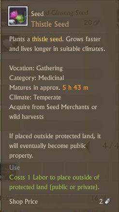 Thistle Seed Txt.jpg